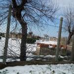 Mattinata-di-neve-016
