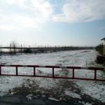 Mattinata-di-neve-018