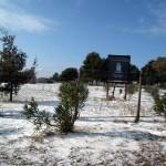 Mattinata-di-neve-023