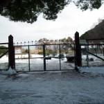 Mattinata-di-neve-025