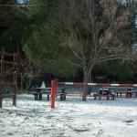 Mattinata-di-neve-026