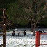 Mattinata-di-neve-029