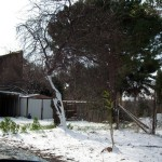 Mattinata-di-neve-030