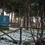 Mattinata-di-neve-038