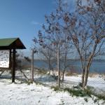 Mattinata-di-neve-040