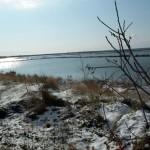 Mattinata-di-neve-041