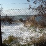 Mattinata-di-neve-045