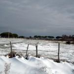 Mattinata-di-neve-046