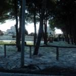 Mattinata-di-neve-065