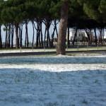 Mattinata-di-neve-068