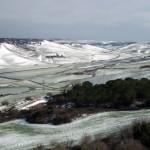 Mattinata-di-neve-076