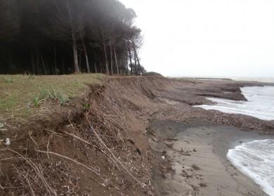 - 0 S. Giorgio inghiottita la spiaggia - a rischio la Pineta