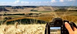 Concorso-fotografico-Terre-della-Farnesiana