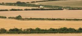 campi-mietitrebbia-grandi-colture-byflcc20-strangeones