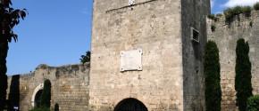 Torre Dante, foto di Roberto Ercolani
