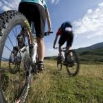 bikerevier_mountainbike_2_gross