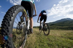 bikerevier_mountainbike_2_gross