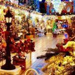 Regno Babbo Natale vetralla