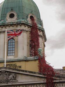 weeping window poppies london