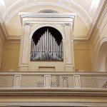 organo valverde
